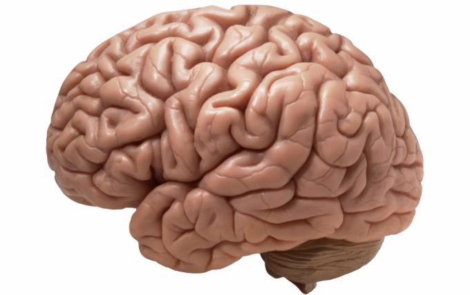 Tumor no cérebro